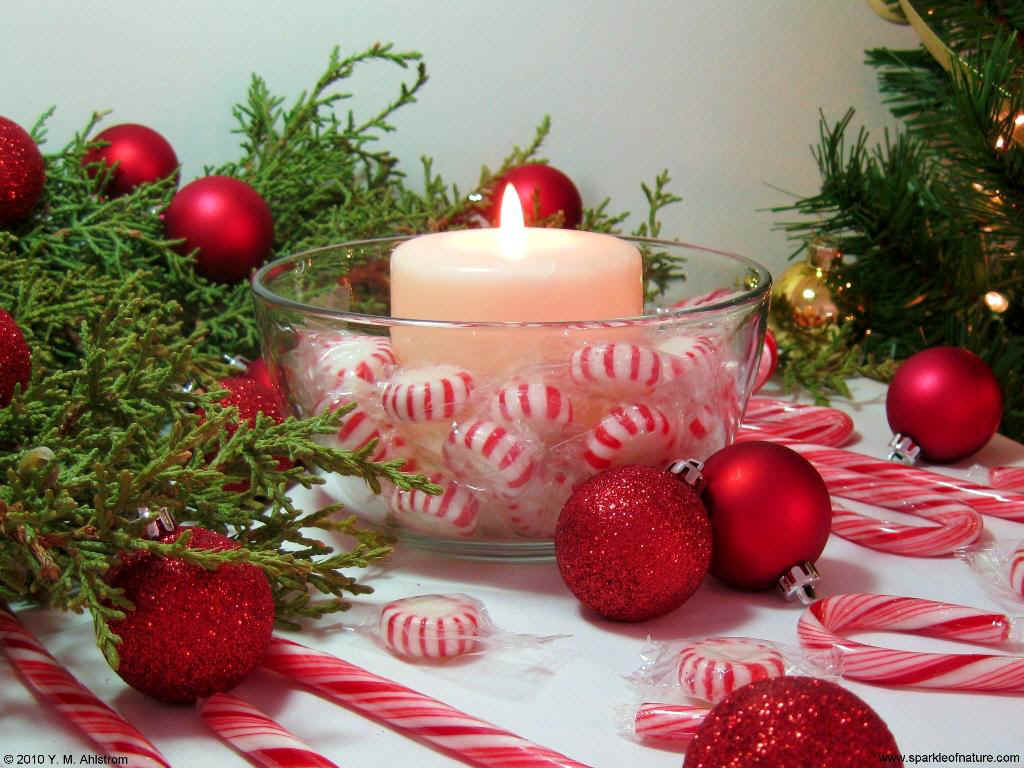 10461 Peppermint Candle 1024x768 143912 Bytes